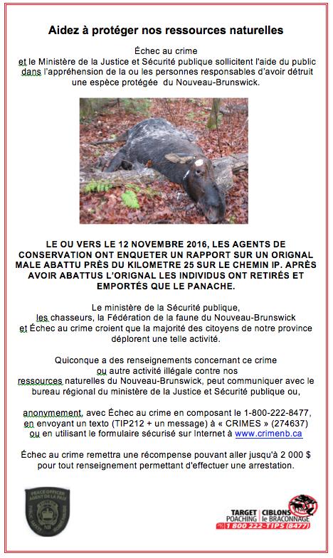 Poster DPS Francais
